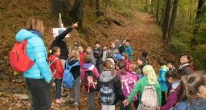 Graglia, bambini, bosco